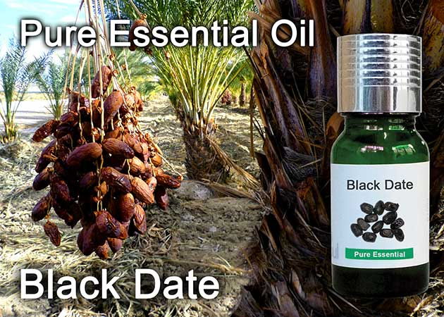 black date essential oil