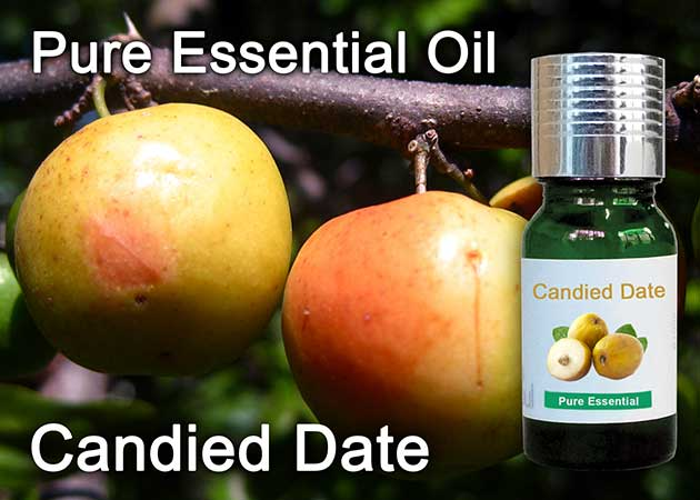 candied date essential oil