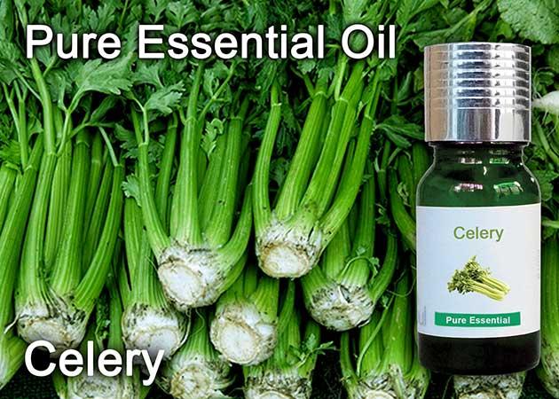 celery essential oil