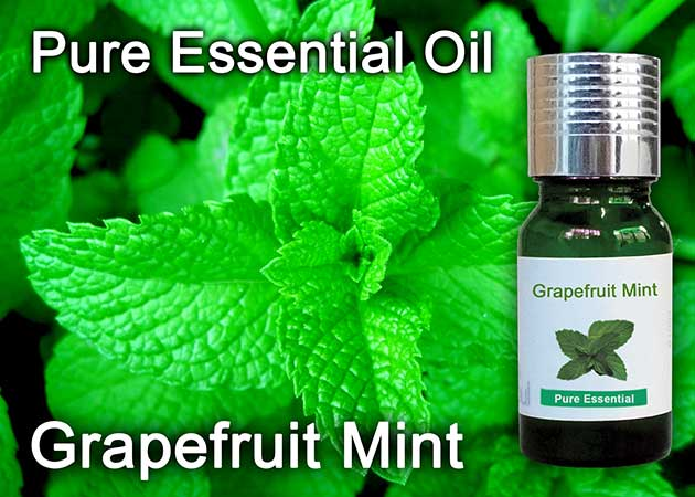 grapefruit mint essential oil