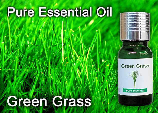 green grass essential oil