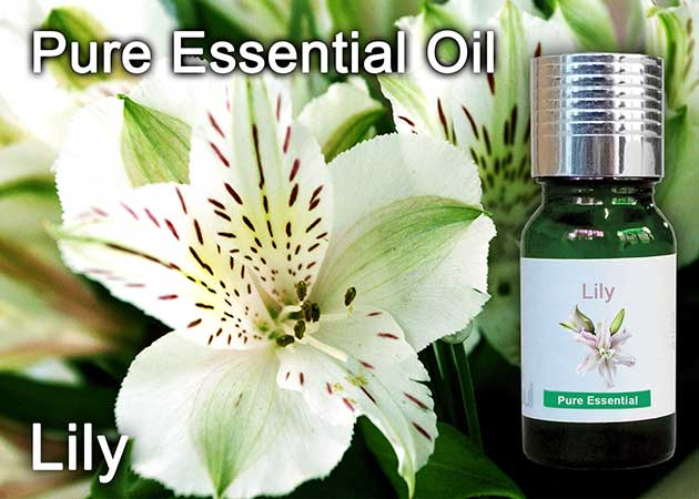 lily flower essential oil