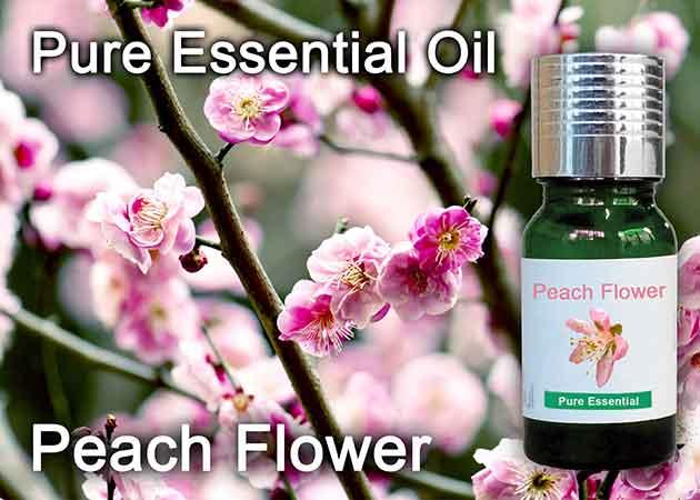 peach flower essential oil