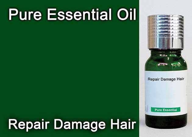 repair damage hair essential oil