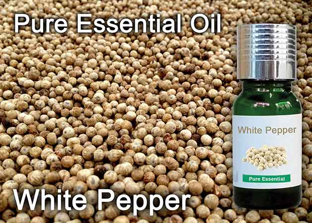 white pepper essential oil