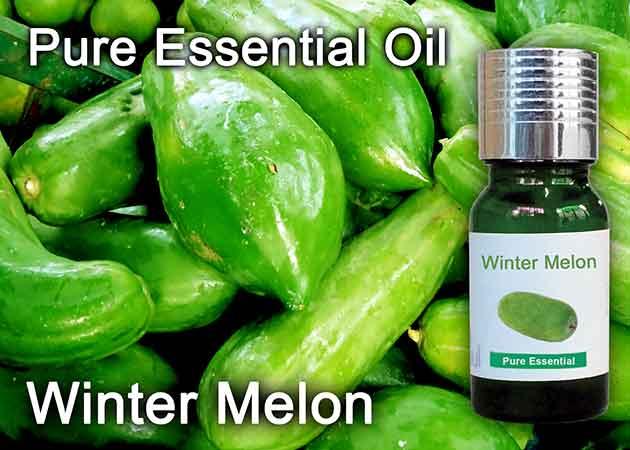 winter melon essential oil